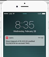 Access Your Bank Accounts at Bank of America